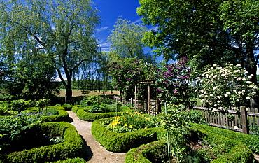 Herb garden, Bad Birnbach, Rottal Valley, Lower Bavaria, Germany, Europe
