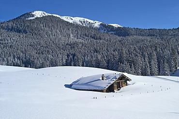 The Alpine hut Traunsteiner Huette on the Winkelmoosalm in the Background mount Duerrnbachhorn 1776 m Upper Bavaria Germany