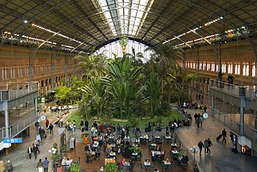 Tropical garden in the old concourse of Atocha railway station, Madrid, Spain