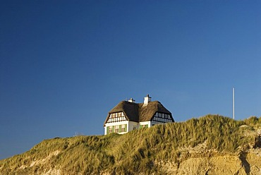 Cottage with thatched roof at the coast of the North Sea, Jutland, Denmark