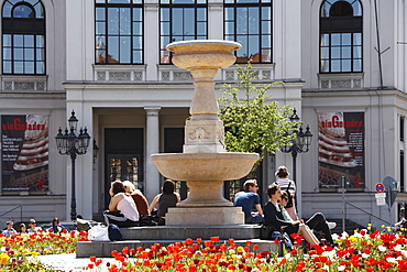 Flowering Tulips (Tulipa) at Gaertnerplatz Square in front of Gaertnerplatz Theatre, Isarvorstadt, Munich, Bavaria, Germany, Europe