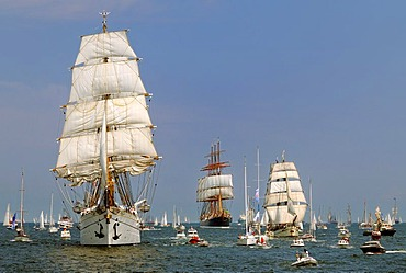 Parade of sailing ships during Kiel Week 2006, Kiel Fjord, Schleswig-Holstein, Germany