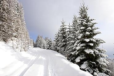 Winter landscape in the mountains, Carinthia, Austria.