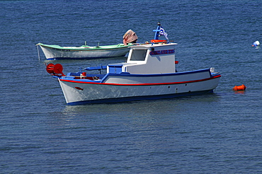 Typical Greek fishing boats in the port town of Kos, Kos, Dodekanes, Greece, Europe