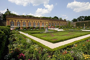 Weilburg Renaissance Castle, built 1533-1572, lower orangery with fruit espaliers, Weilburg an der Lahn, Hesse, Germany, Europe