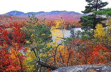 View over autumn coloured leaves to Lac Stukely lake, Indian summer in Mont-Orford National Park, Quebec, Eastern Canada