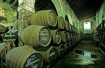 Sherry-Bodega Osborne in El Puerto de Santa Maria Costa de la Luz Andalusia Province Cadiz Spain