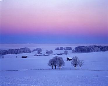 Winter morning Muensing Upper Bavaria Germany