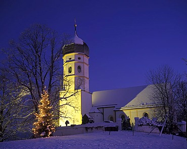 St. Johannes der Taeufer und Georg, Church of St John the Baptist and George, with Christmas tree, Holzhausen, Muensing, Upper Bavaria, Germany, Europe