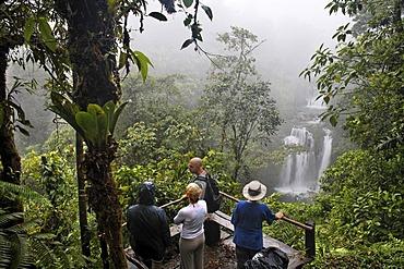 Tourist at viewpoint, waterfall, Rara Avis, Las Horquetas, Costa Rica