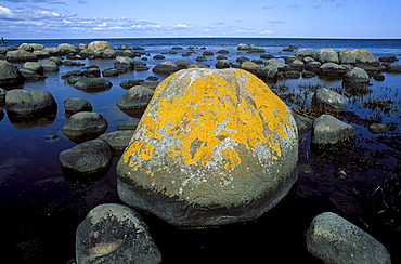 Stenshuvud National Park, Baltic Sea, Skane, Sweden