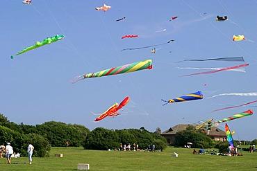 Kite flying on the peninsula near Newport (Rhode Island, USA).