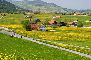 Scenery of a typical settlement with scattered buildings. This type of settlement is usually found in prealpine settings, as seen here in Appenzell (Switzerland).