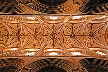Gothic ceiling vault, Hanseatic-style Nikolai Church built 1407-1440, Lueneburg, Lower Saxony, Germany, Europe