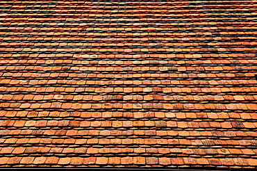 Old clay tile roofing of a farmhouse, Lassahn, Mecklenburg-Western Pomerania, Germany, Europe