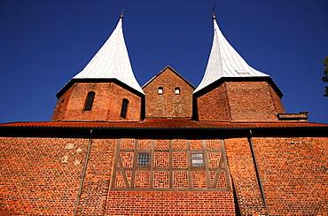 Bardowick Cathedral, Bardowick, Lower Saxony, Germany, Europe