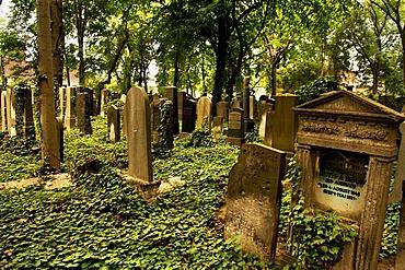 Jewish cemetery, 1827, Prenzlauer Berg, Berlin, Germany, Europe
