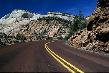 Zion national park, Utah, Arizona, USA