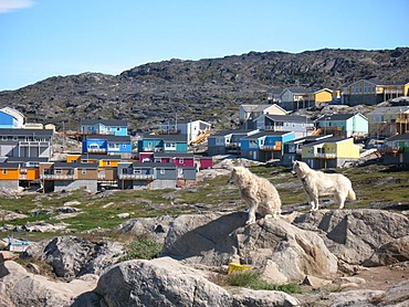Western Greenland, Disko Bay, Ilulissat, wooden houses and