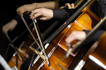 Cello players