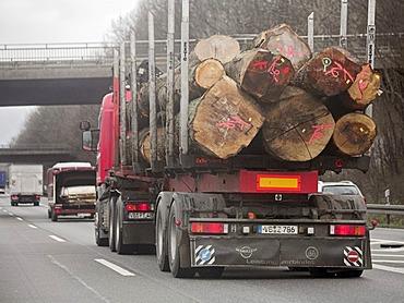 Artic lorry, logging