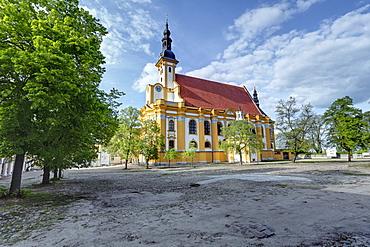 Abbey church St. Marien in the Neuzelle Abbey, Neuzelle, Brandenburg, Germany, Europe