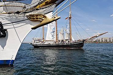 Albatross as a figurehead of the Gorch Fock, sailing school ship of the German Navy, and the Swedish Schooner named Westkust, Hanse Sail 2008 in Warnemuende, Mecklenburg-Western Pomerania, Germany, Europe