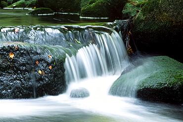 Kleine Ohe stream in fall, Nationalpark Bayerischer Wald (Bavarian Forest National Park), Bavaria, Germany, Europe