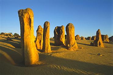The Pinnacles Desert, Nambung National Park, Western Australia, Australia, Oceania