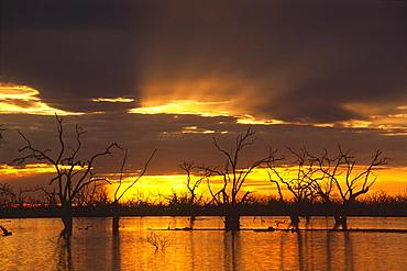 Sunset over Lake Pamamaroo, Kinchega National Park, New South Wales, Australia, Oceania