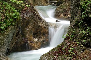 Stream, Wolfsklamm (Wolf's Gorge), Stans, North Tirol, Austria, Europe