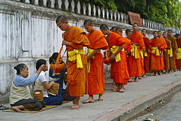 Monks and novices begging for their daily food in Luang Prabang, Laos