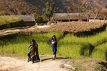 Children in the mountainous countryside surrounding Nagarkot, Nepal, Asia