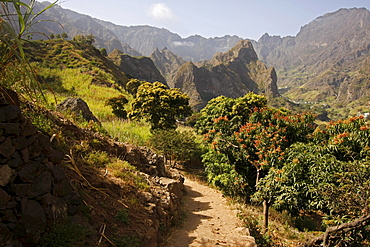 Fertile Paul Valley on Santo Antao Island, Cape Verde Islands, Africa