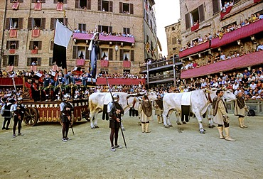 Historic Palio horse race, Carroccio, triumph wagon, with the trophy, the Palio, flag, Piazza Il Campo, Sienna, Tuscany, Italy, Europe