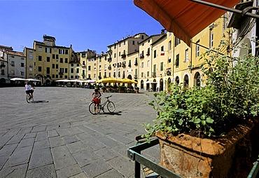 Piazza del Anfiteatro, Piazza Mercato, Ampitheatre, Lucca, Tuscany, Italy, Europe