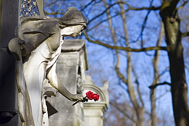Angel statue holding red rose on a gravestone, Alter Suedfriedhof Cemetery, Munich, Bavaria, Germany