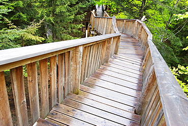 Longest treetop path of the world, Kopfing, Upper Austria, Europe