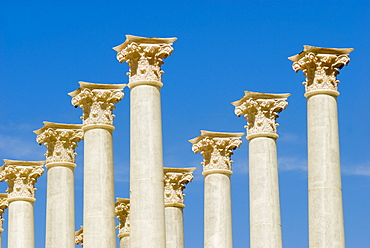 Forum Romanum, Columns of the temple of the Venus and the Roma, Rome, Italy.
