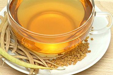 Tea made of Fenugreek, Trigonella foenum-graecum, fornum graecum, Fieno greco,