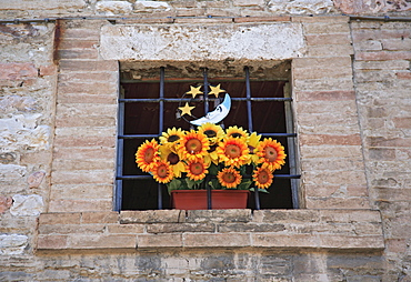 Bunch of flowers in the old part of town, Assisi, Umbria, Italy