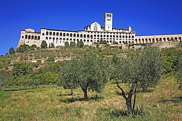 Basilika San Francesco, Assisi, Umbrien, Italien