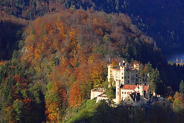 Hohenschwangau Castle in morning light, Schwangau, Bavaria, Germany