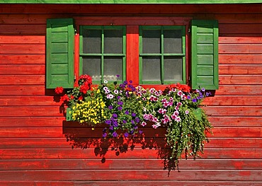 Flower boxes at a hut