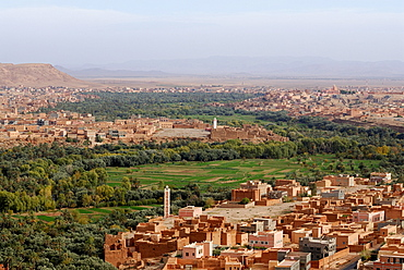 Oasis landscape, Tinerhir, Quarzazate, Morocco, North Africa