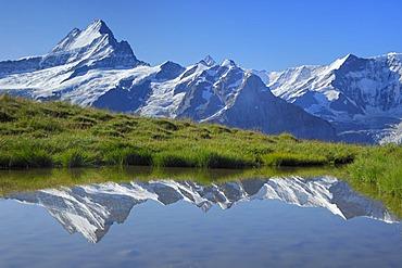 Schreckhorn being reflected in the Bachalpsee, First near Grindelwald, Bernese Oberland, Switzerland
