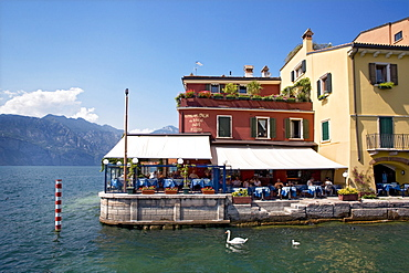 Restaurant by the Lake, Malcesine, Lake Garda, Venetia, Italy, Europe