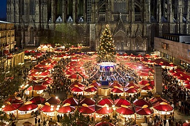 Aerial view of the illuminated christmas market and christmas tree in front of Cologne Cathedral, North Rhine-Westphalia, Germany, Europe