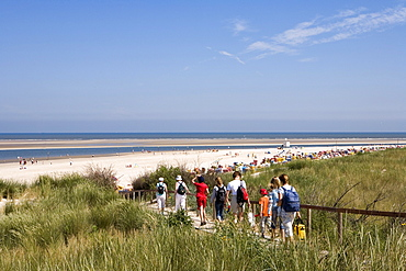 Dunes and beach, Langeoog Island, East Frisia, Lower Saxony, Germany, Europe