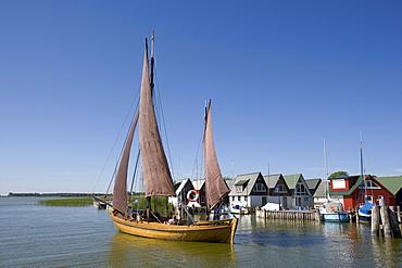 Zeesenboot, a type of sailboat, in Boddenhafen Harbour, Ahrenshoop-Altenhagen, Fischland, Baltic Sea, Mecklenburg-Western Pomerania, Germany, Europe